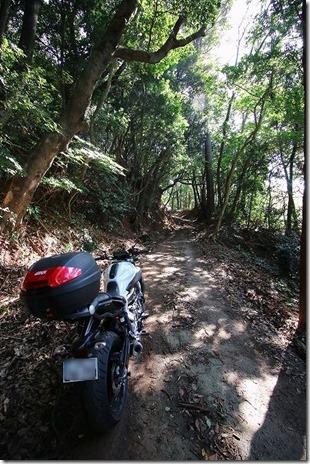 糸島 火山の道