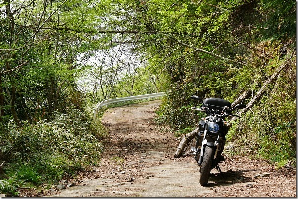 天山ダムへ林道