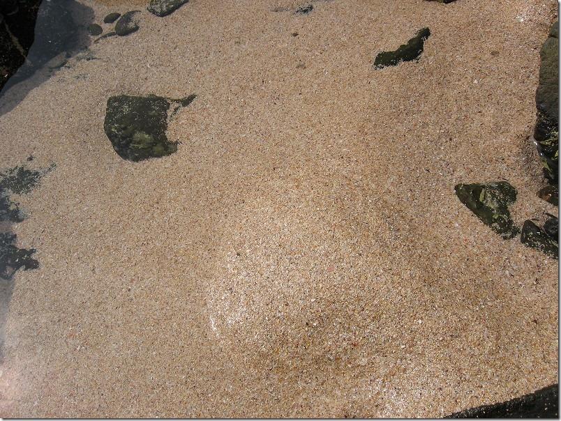 壱岐ツーリング、錦浜