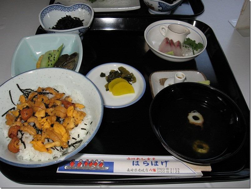 壱岐ツーリング食堂「はらほげ」、生ウニ丼