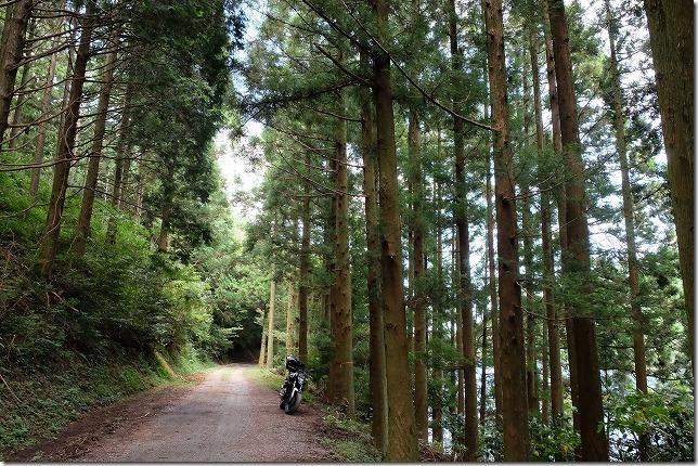 糸島、不動池のフォトスポットへの道
