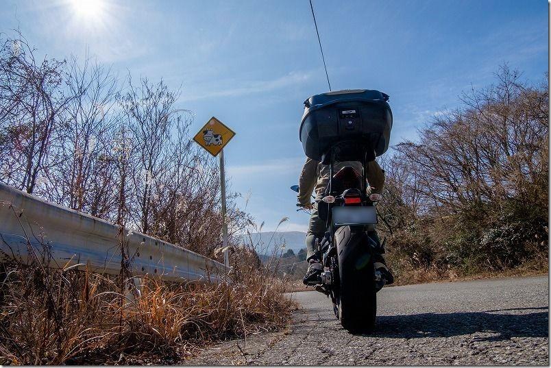 天山の牛さんマークとバイクMT-07
