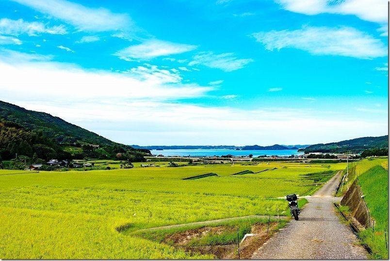 松浦市周辺を散策ツーリング(今福の棚田)
